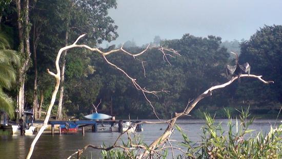 Boca Sabalos照片