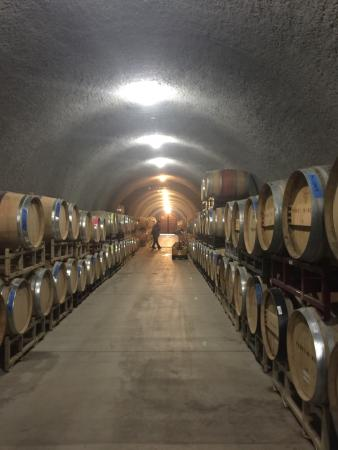 Napa Valley Wine Country Tours: photo1.jpg