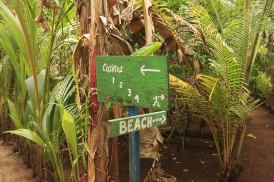 Casa Iguana: intersección entre los caminos.