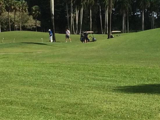 Hotel Indigo Miami Lakes: Campo golf
