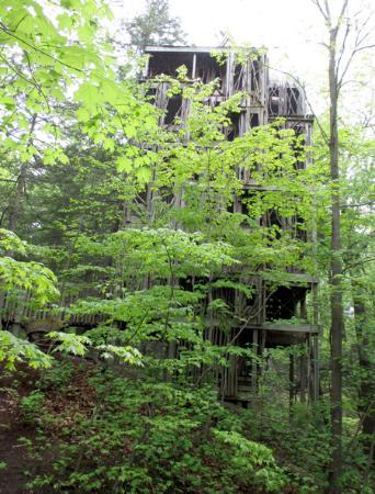 Cayuga Nature Center: The Treehouse