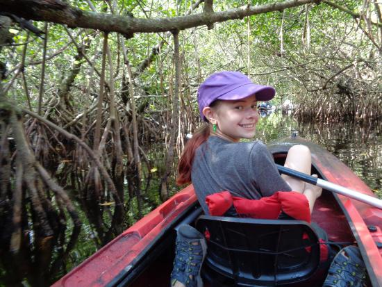 Everglades City, FL: Some mangrove tunnels