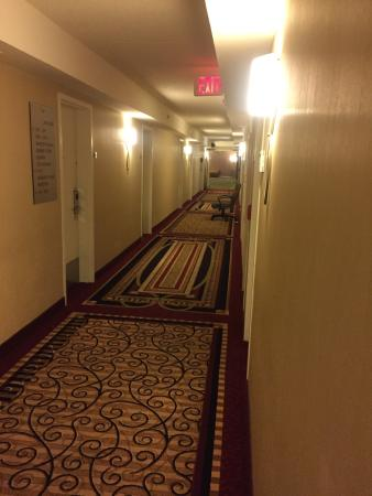 Washington Dulles Airport Marriott: photo0.jpg