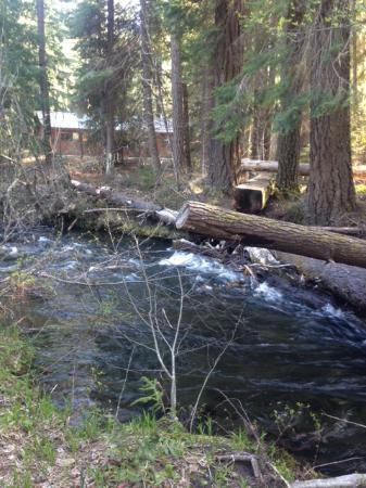 Zdjęcie Union Creek Resort