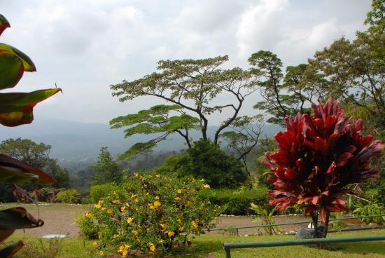 Heliconias Lodge Picture