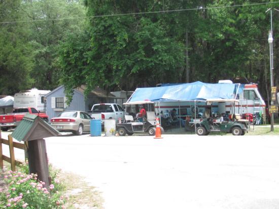 Live Oak, FL: cabins for rent