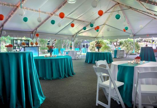 Trumbull, Коннектикут: Outdoor Wedding Reception