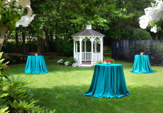 Trumbull, Коннектикут: Outdoor Wedding Cocktail Reception