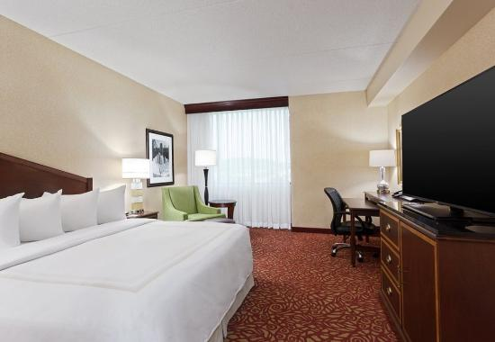 Hoffman Estates, إلينوي: Executive King Guest Room