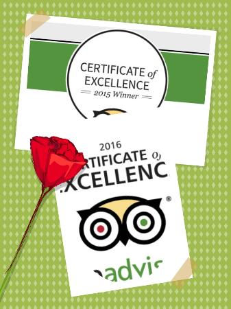 Lodtunduh, Indonesia: Certificate of Excellence
