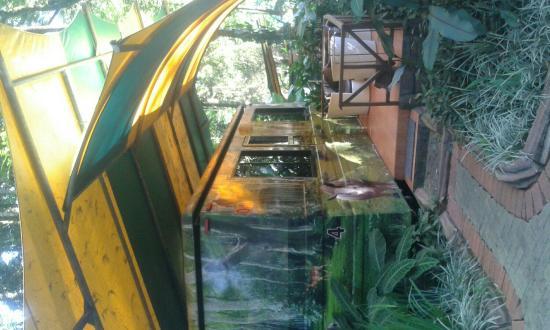 caravan room picture of taman safari lodge puncak tripadvisor rh tripadvisor com au