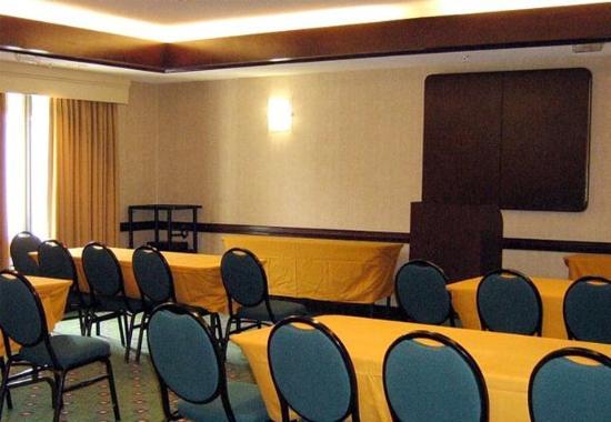 Suwanee, GA: Meeting Room