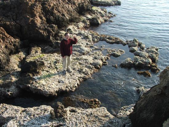Mazarron, Spanyol: Exploring a rock pool at Playa de Percheles
