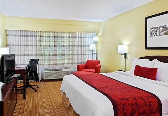 Atenas, GA: King Guest Room