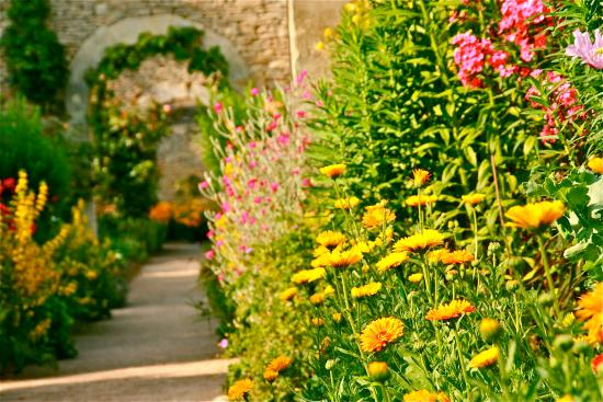 Mezidon-Canon, France: Chartreuses