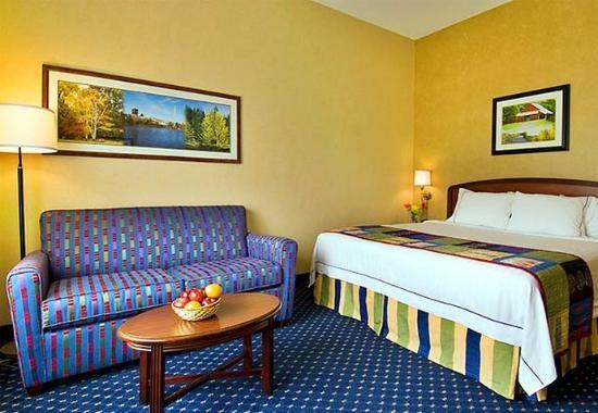 Lynchburg, VA: King Guest Room