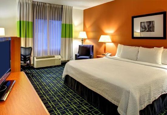 Fletcher, Kuzey Carolina: King Guest Room