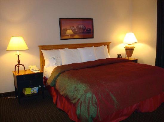 Homewood Suites by Hilton Phoenix / Scottsdale: King Bedded Suite