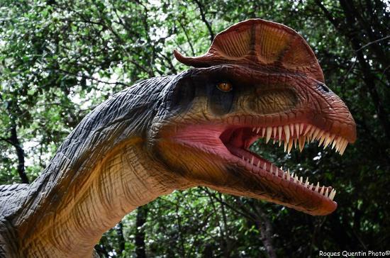 Saint-Hilaire-de-Riez, Francja: Parcours dinosaures