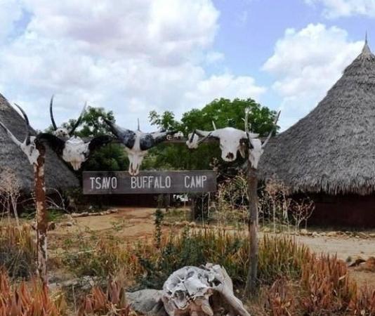 Tsavo Buffalo Camp: ingresso