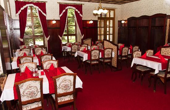Zamecky penzion Kopecek : Nekuřácká restaurace