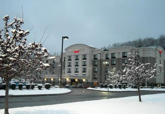 Photo of SpringHill Suites Pittsburgh Mills Tarentum