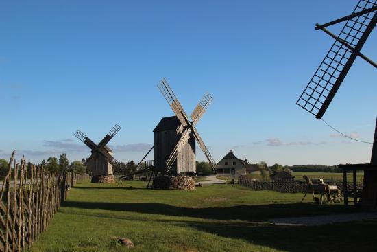 Muhu, Estonia: Вид на ветряные мельницы острова Муху