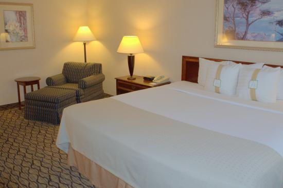 Elk Grove Village, IL: King Bed Guest Room at Holiday Inn Elk Grove Near O'Hare Airport