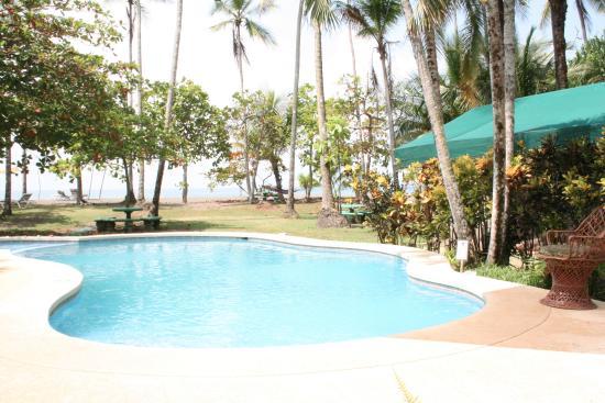 Playa Matapalo, คอสตาริกา: Pool, with ocean view