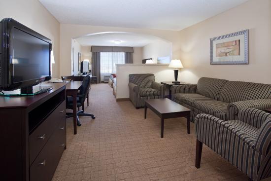 Holiday Inn Express Denver Tech Center-Englewood Suite