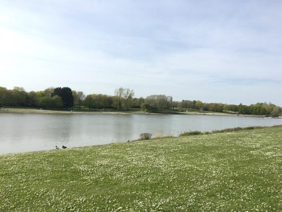 Stevenage, UK: Beautiful park!