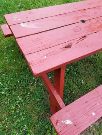 Blountville, TN: Filthy picnic table covered in bird poop upon arrival.