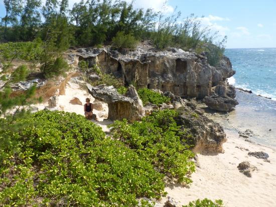 Maha'ulepu Heritage Trail: Fantastic shoreline hike!