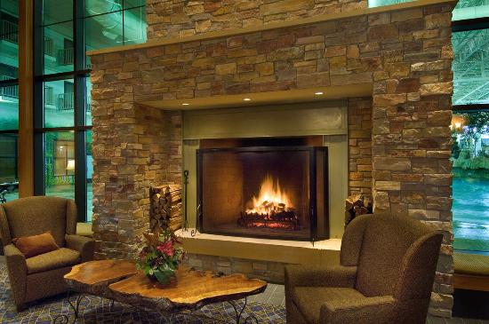 Fireplace Bloomington  Radisson Hotel Bloomington by Mall of America: Fireplace Angle