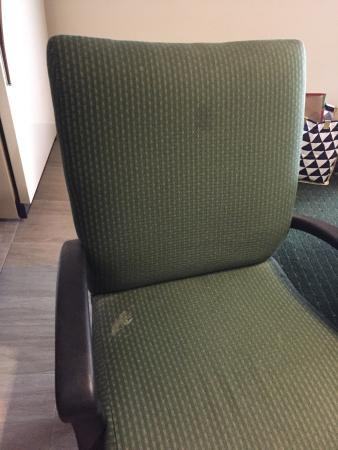 Hawthorn Suites By Wyndham Fishkill/Poughkeepsie Area: Damaged stairs, STINK BUGS and questionable stains