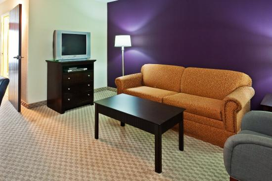 ฮิกซ์สัน, เทนเนสซี: King Bed Suite at Holiday Inn Express & Suites Chattanooga-Hixson