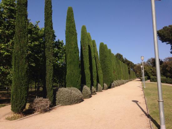 Sant Joan Despí, España: parque