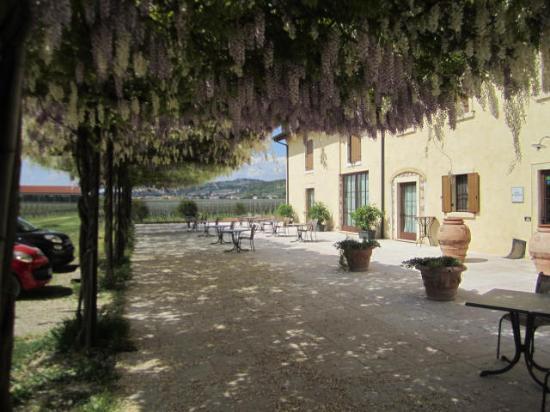 San Pietro in Cariano, Italia: Front Patio