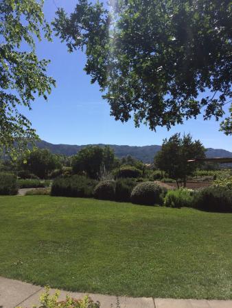 Rutherford, كاليفورنيا: photo2.jpg