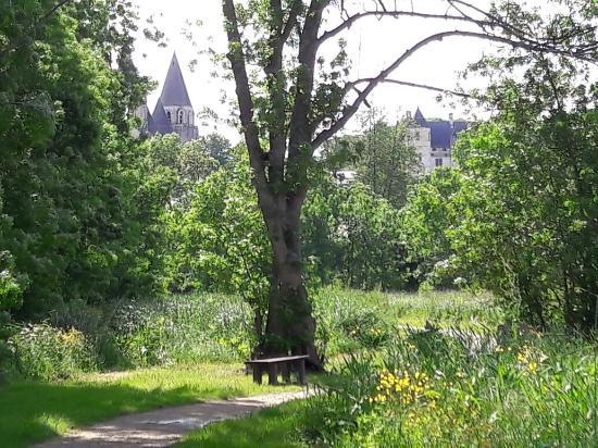 Beaulieu-les-Loches, Francja: Vue sur loches