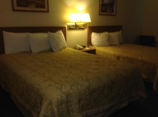 Super 8 by Wyndham Battle Mountain: Beds