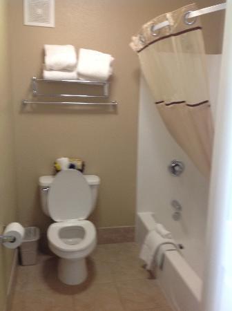 Fallon, NV: Bathroom