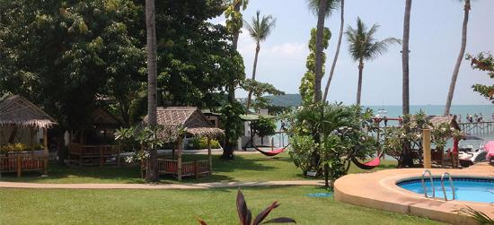 Samui Pier Resort: Pool and Grounds