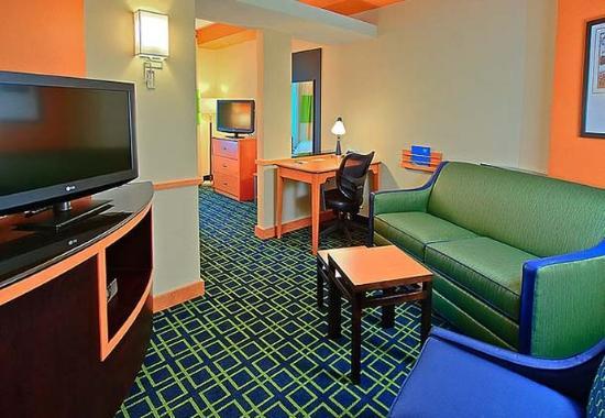 New Cumberland, بنسيلفانيا: Executive King Suite Living Area