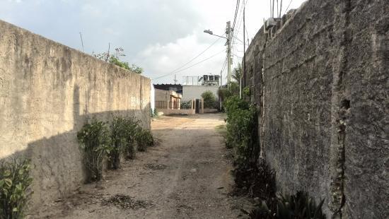 Posada Misscenta: Calle para ingresar.