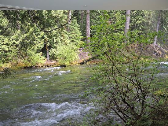 Sisters, Oregón: Mc Kenzie River between the falls