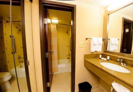 Irving, TX: Suite Bathroom