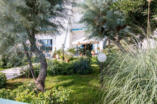 Hotel Eliseo : Una piccola oasi di verde...
