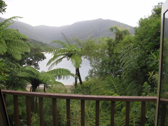Endeavour Inlet, New Zealand: Little cabin nestled into tropical forest overlooking the cove.