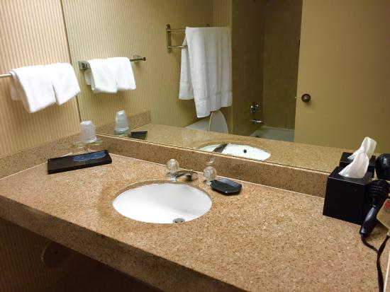 Sheraton Fort Lauderdale Airport & Cruise Port: All the amenities you need including hair conditioner and body lotion.
